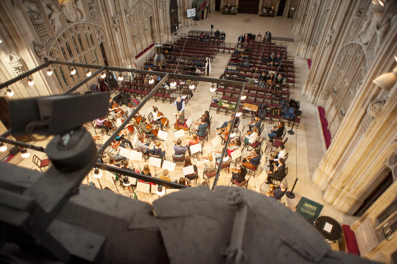 hjorthmedh-kings-organ-view