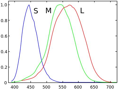 wikipedia-500px-Cones_SMJ2_E