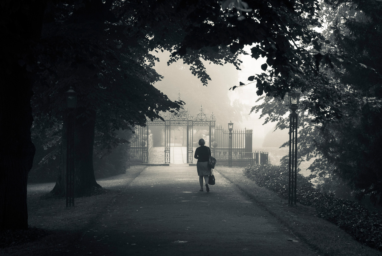 morning-mist-clare-college