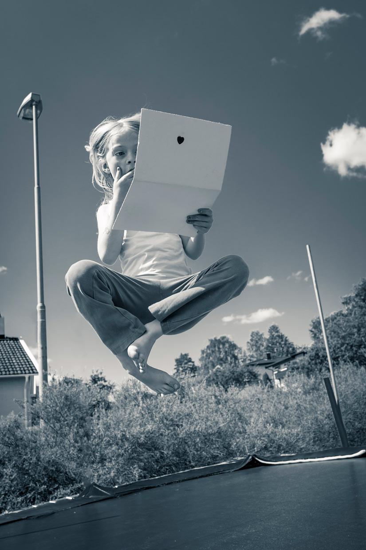 hjorthmedh-smaland-2014-fake-laptop