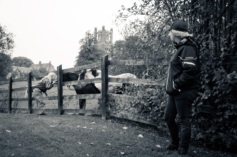 hjorthmedh-cambridge-family-fun-ely-horses
