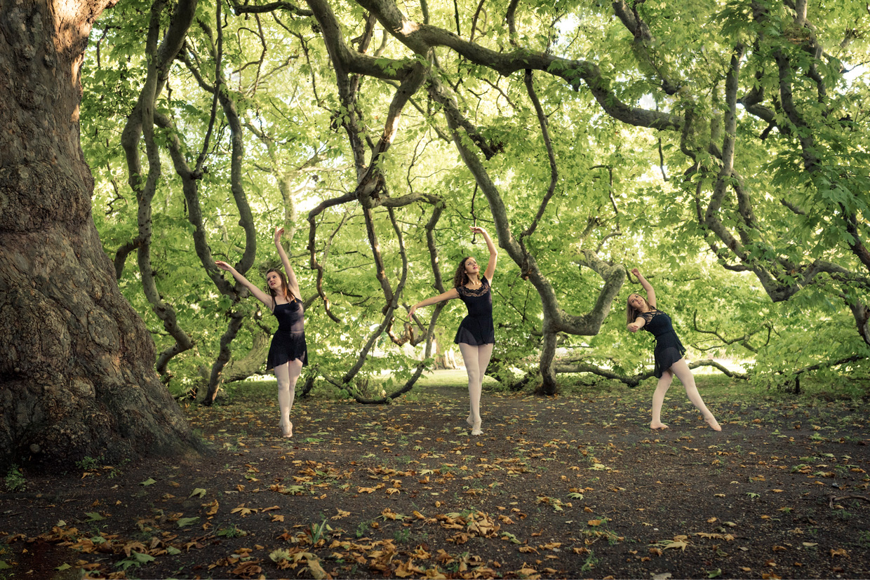 hjorthmedh-on-with-the-ballet-tree