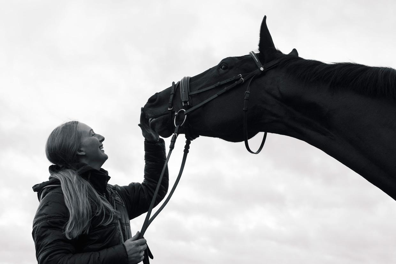 hjorthmedh-equestrian-cousin-horse-nibbling