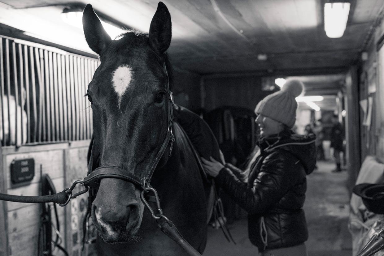 hjorthmedh-equestrian-cousin-inside