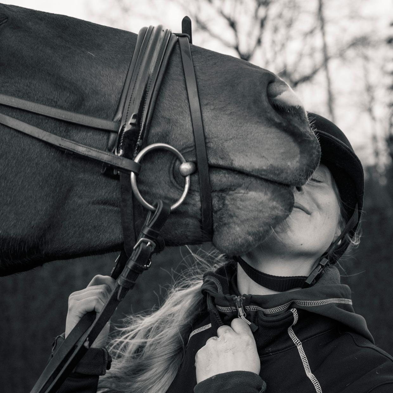 hjorthmedh-equestrian-cousin-nuzzle