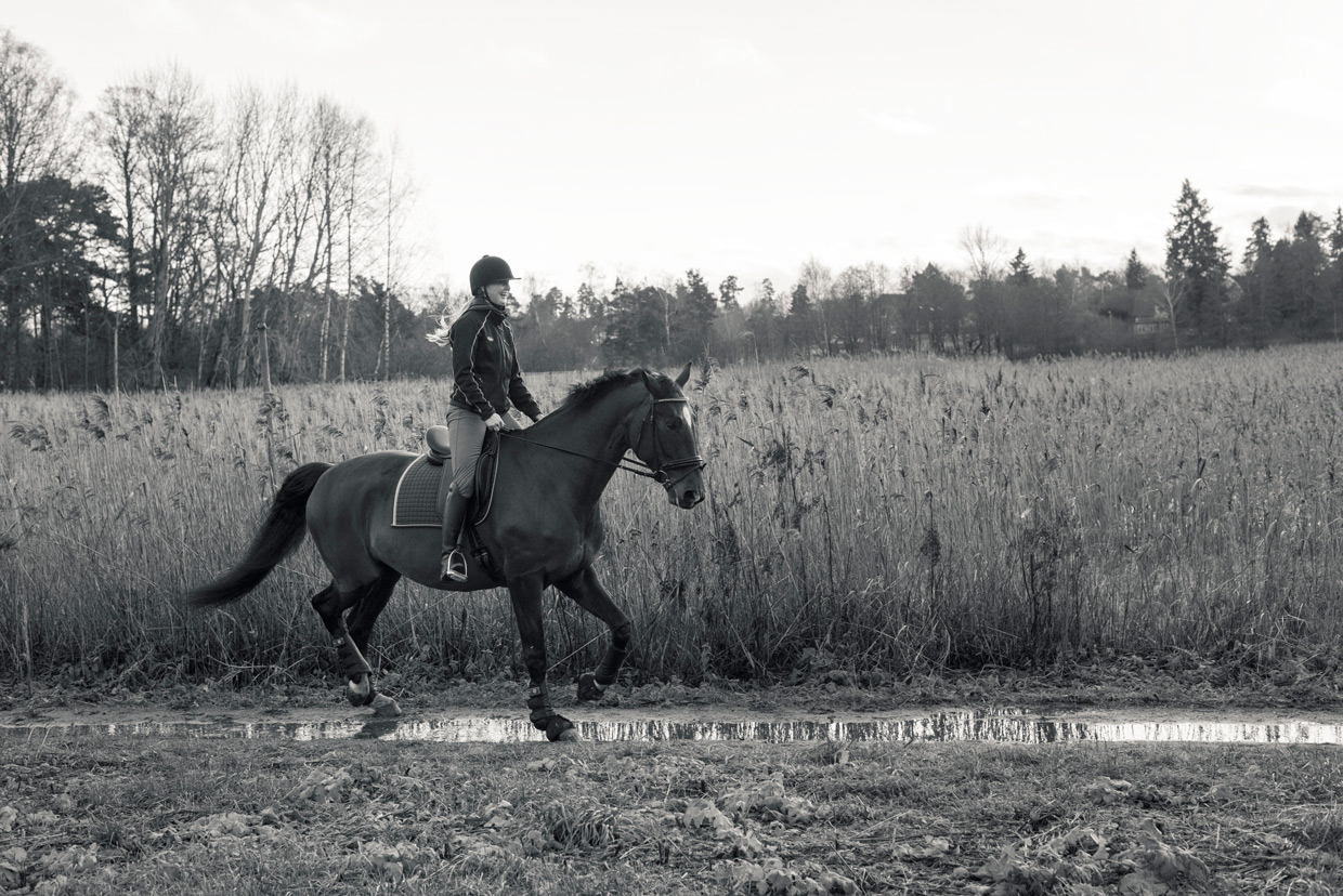 hjorthmedh-equestrian-cousin-riding