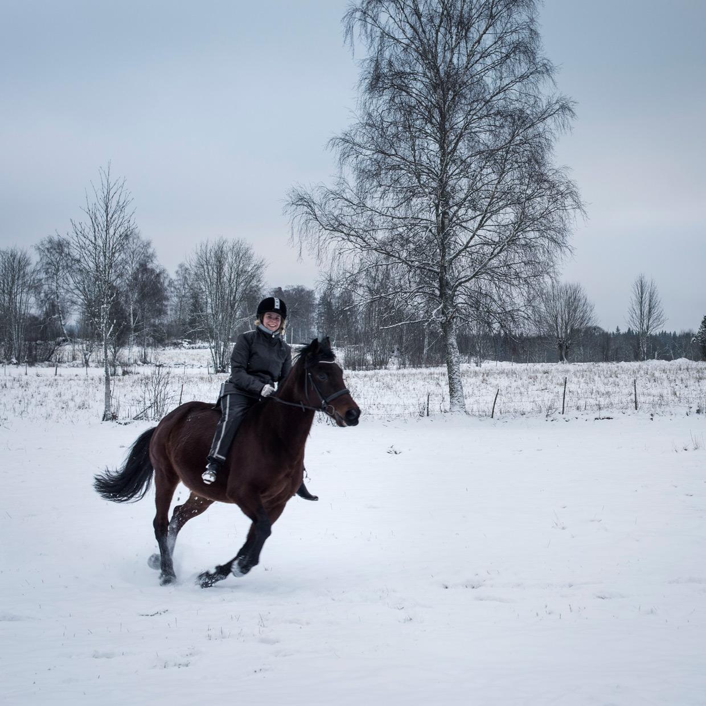 hjorthmedh-trula-sandra-riding-2