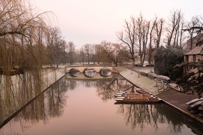 hjorthmedh-january-morning-walk-2