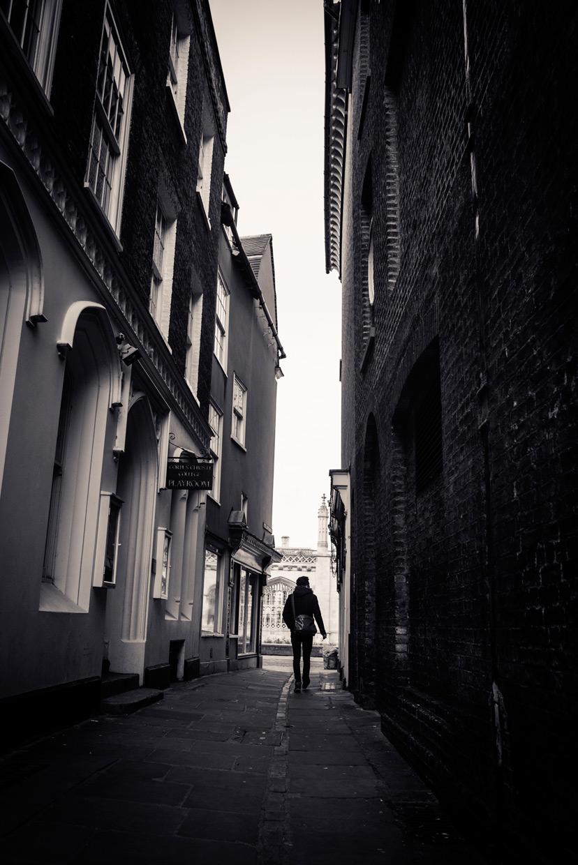 hjorthmedh-january-morning-walk-3