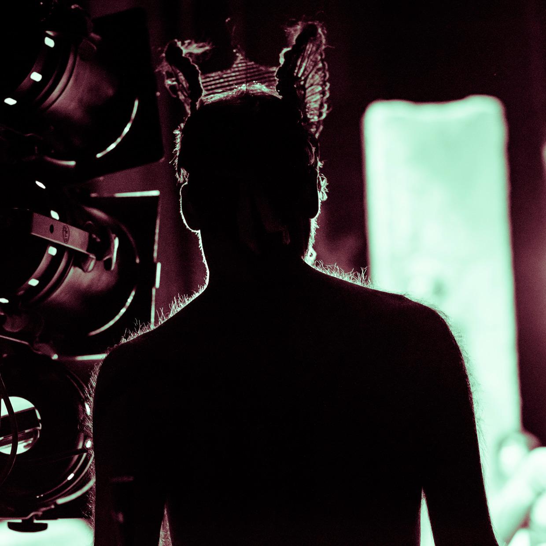 hjorthmedh-equus-behind-the-scenes-silhouette