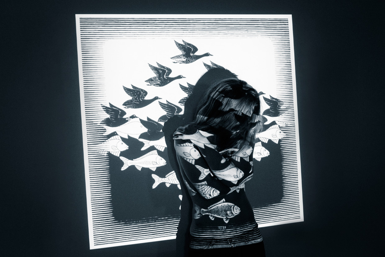 man-ray-meets-escher-alicia-fishes-and-birds