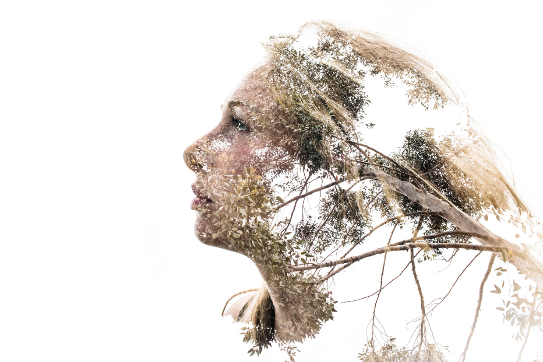 hjorthmedh-alicia-and-a-chain-tree