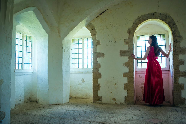 hjorthmedh-lady-of-the-castle-helena-blair-10