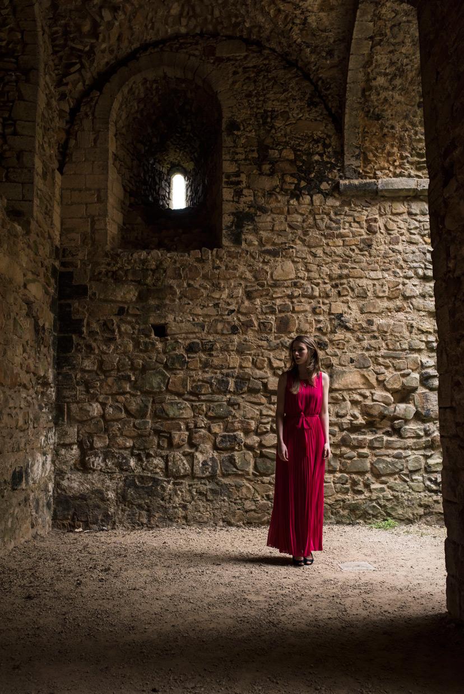 hjorthmedh-lady-of-the-castle-helena-blair-16