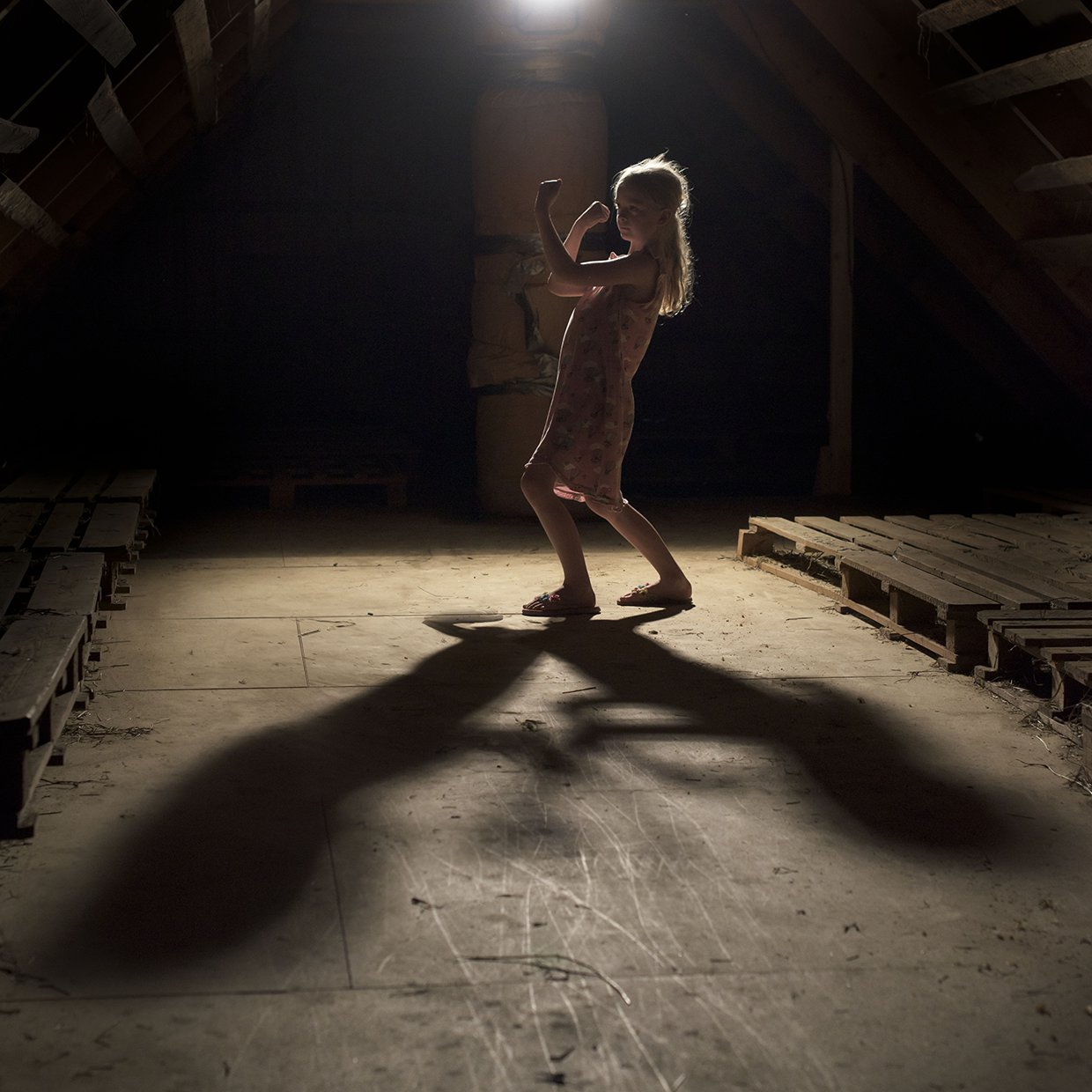 hjorthmedh-a-swedish-fairy-tale-2-shadow-boxing