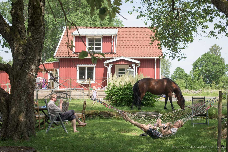 hjorthmedh-a-swedish-fairy-tale-20
