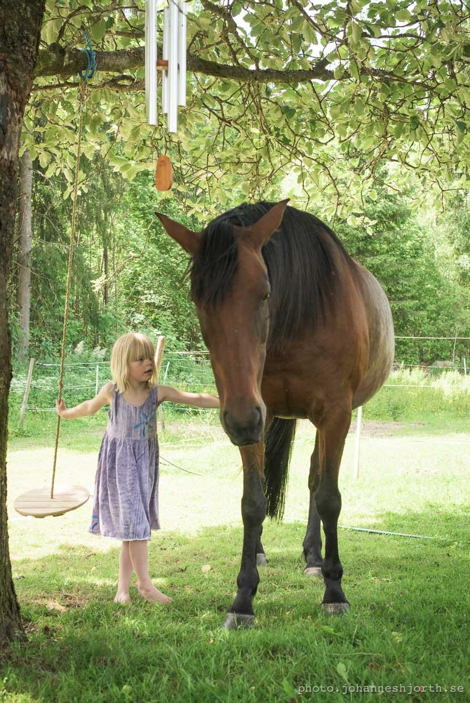 hjorthmedh-a-swedish-fairy-tale-22