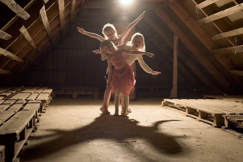 hjorthmedh-a-swedish-fairy-tale-3