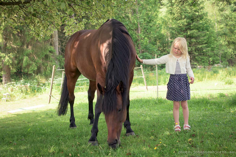 hjorthmedh-a-swedish-fairy-tale-9-trula