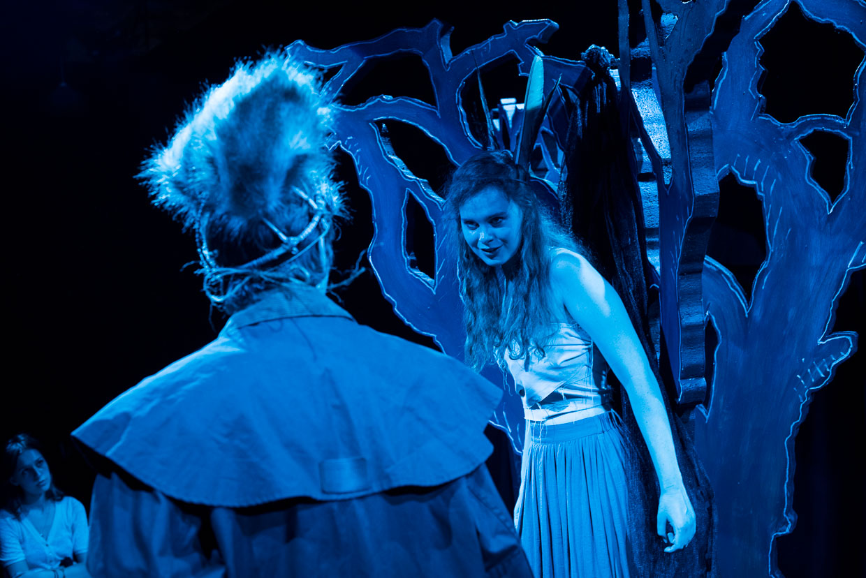 hjorthmedh-a-midsummer-nights-dream-edinburgh-fringe-17