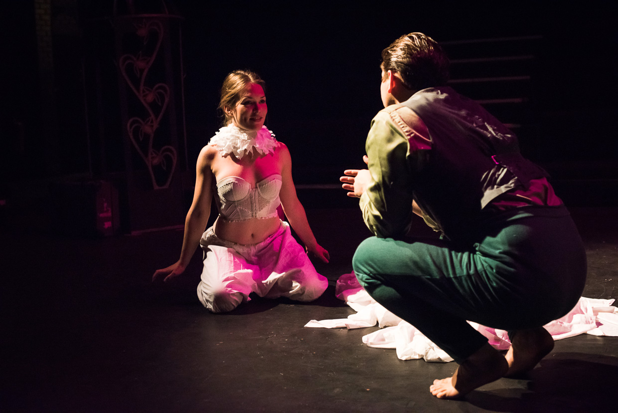 Courting ritual, bird themed theatre play.