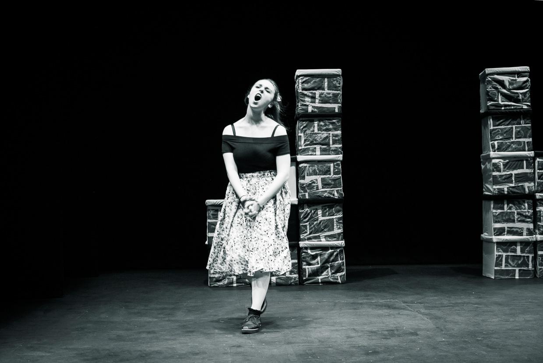 hjorthmedh-taming-of-the-shrew-dress-rehearsal-17