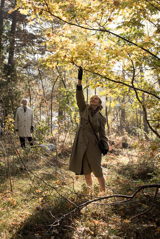 hjorthmedh-autumn-in-nasbydal-16