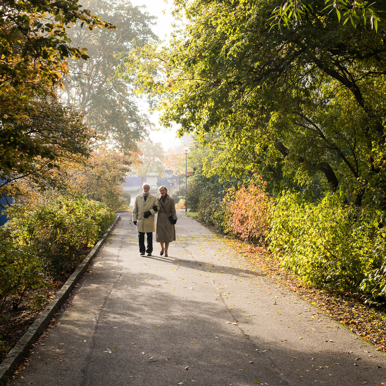 hjorthmedh-autumn-in-nasbydal-7