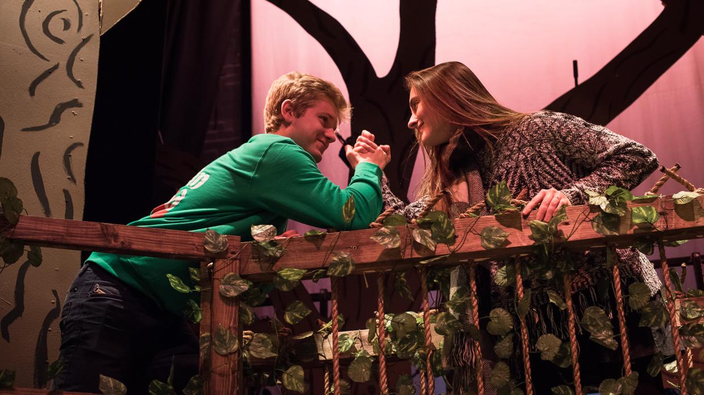 hjorthmedh-panto-robin-hood-final-show-4