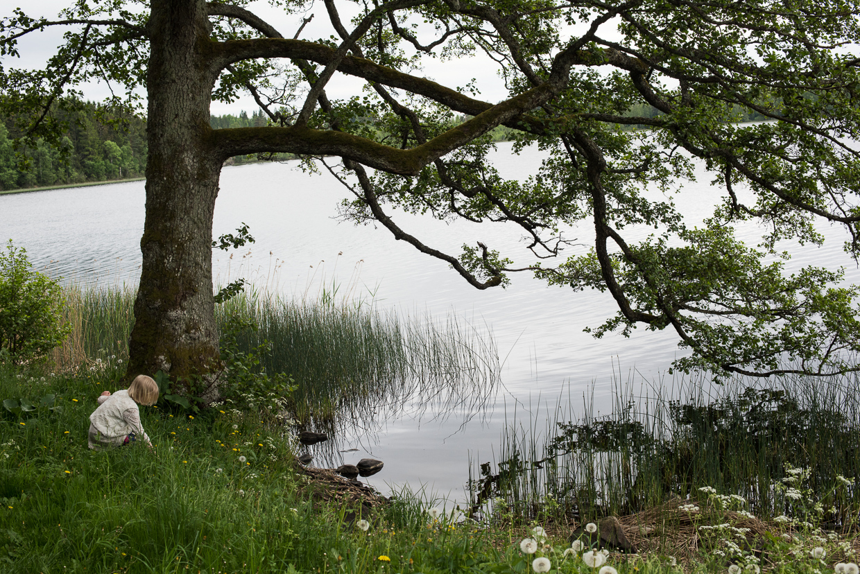 hjorthmedh-castle-ruin-at-eksjohov-72