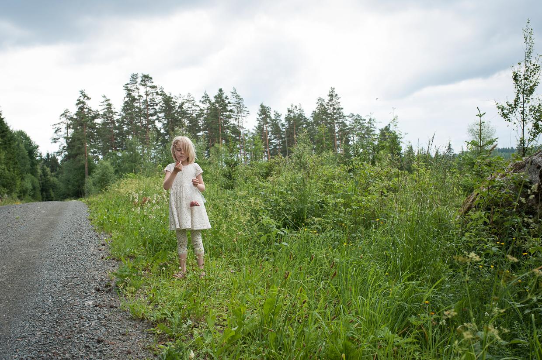 hjorthmedh-midsummer-in-smaland-103