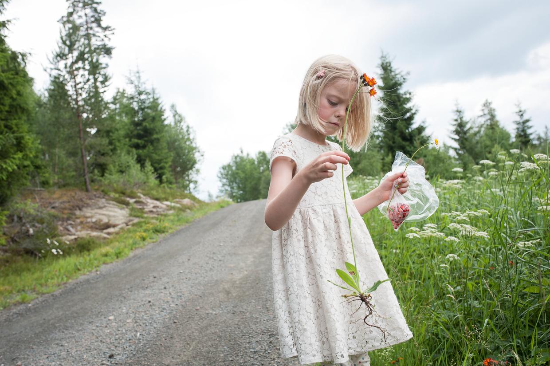 hjorthmedh-midsummer-in-smaland-106