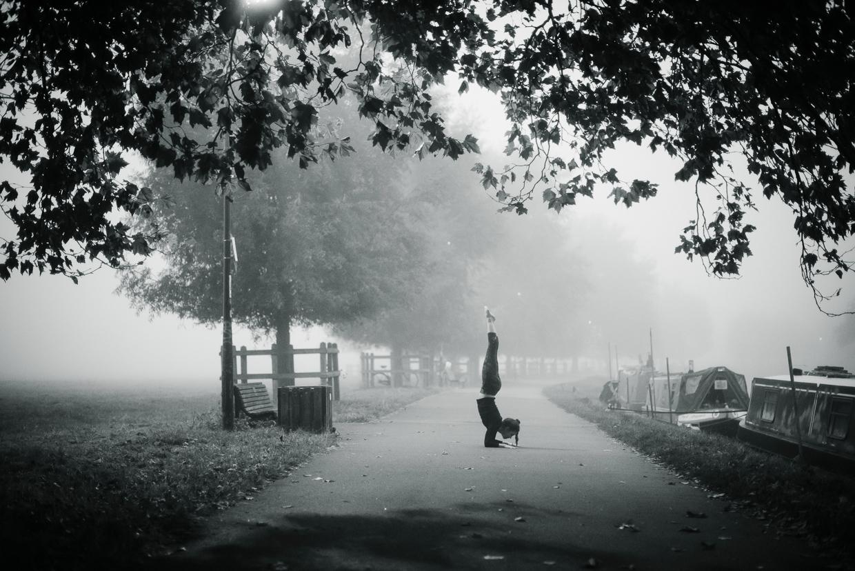 hjorthmedh-vinyasa-in-the-mist-1